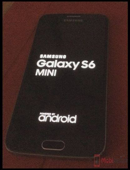 Samsung Galaxy S6 Mini pictures leaked