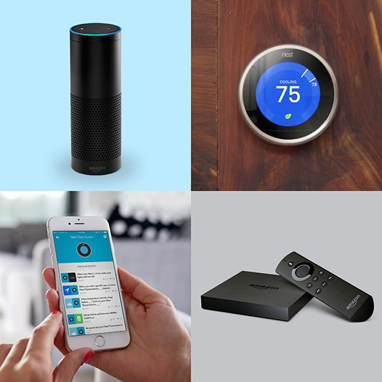 nest amazon echo together