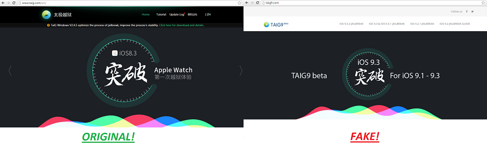 taig fake vs original site