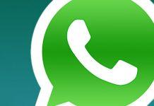apk download whatsapp 2.17.67 beta