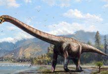 dinosaurs-precursors