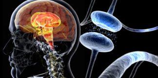 cause-of-parkinsons-disease