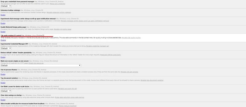 Google Chrome Hidden Features 2