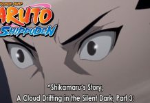 Naruto Shippuden Episode 492