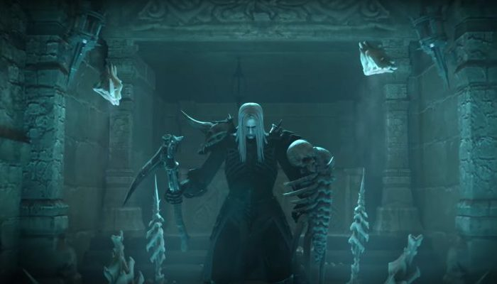 Diablo 3 closed beta necromancer class
