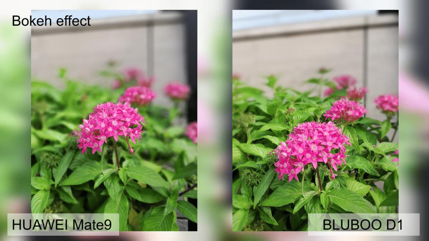 Bluboo D1 vs Huawei Mate 9 Dual Rear Comparison