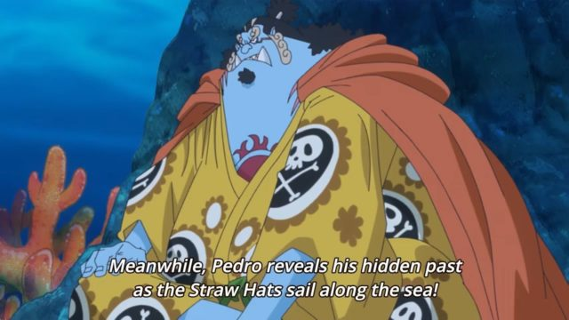One Piece Episode 790