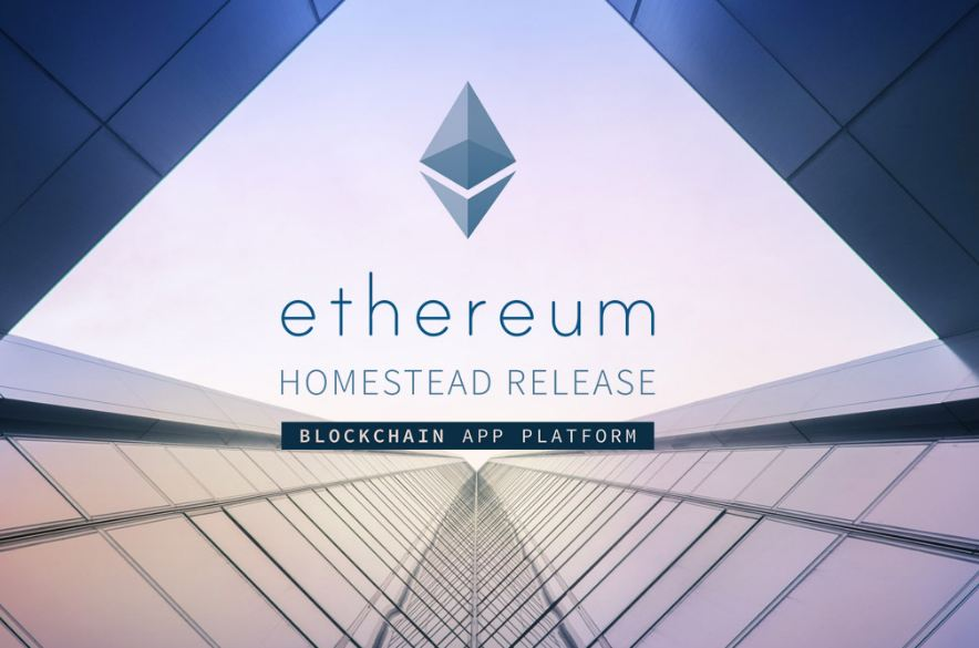 ethereum could be the next bitcoin