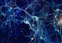 AI using new artificial synapses