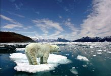 Climate change news_CO2 rates rising even after emission stabilization