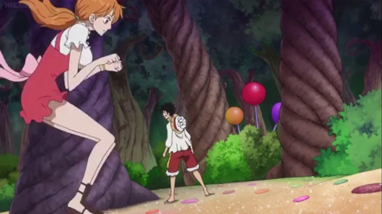 One Piece Episode 795