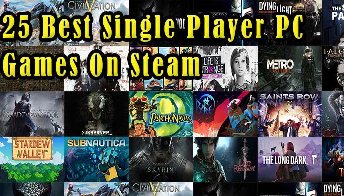 best single player pc games